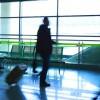 airport-csp13927324-620